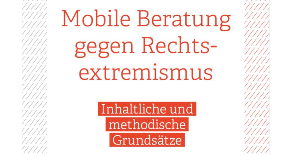 Grundlagenpapier des Bundesverbands Mobile Beratung - aktualisierte Fassung (2021)